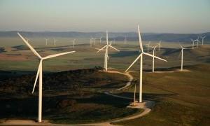 Capital_Wind_Farm_4_1-600x0-2-300x200